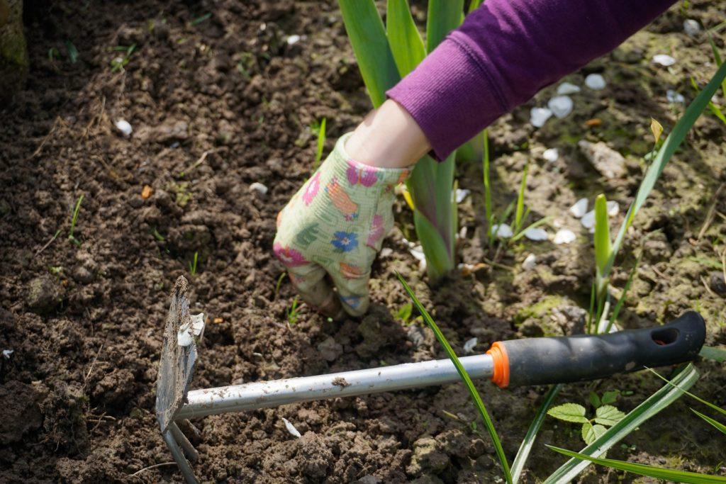 Zavrnite rukave i sredite vaše dvorište uz par savete iz ovog članka